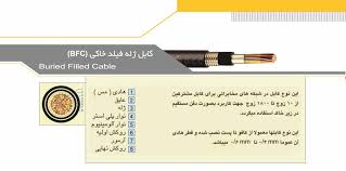 کابل 10 زوج کرمان
